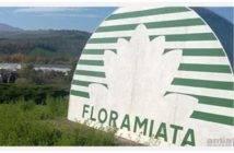 Floramiata_00