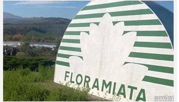 """Piancastagnaio.  Bezzini, Marras, Scaramelli (PD): """"Floramiata, notizia positiva per l'azienda e il sistema produttivo amiatino"""""""