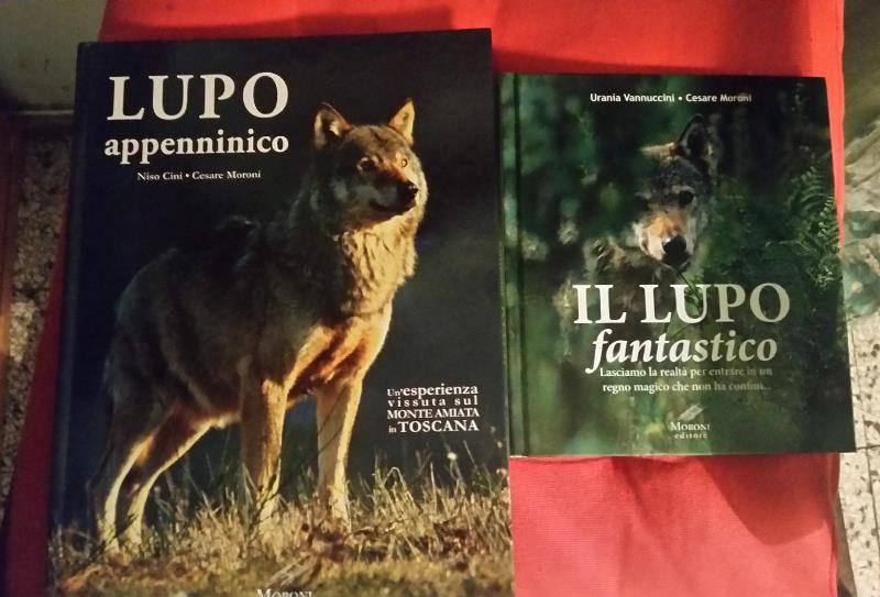 libri_lupo_fantastico_appenninico