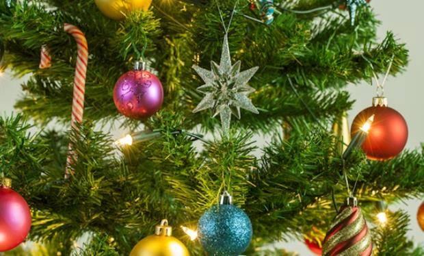 """Cinigiano. Il Comune """"spenge"""" gli alberi di Natale per aiutare i terremotati ..."""