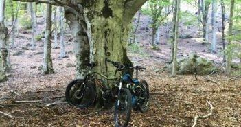 E-bike_bosco_01