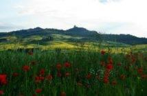Castiglione_dOrcia_primavera