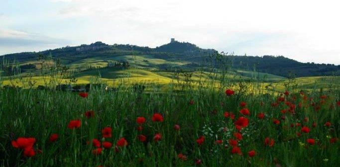 Castiglione d'Orcia. Escursioni, tradizioni negli appuntamenti di Primavera