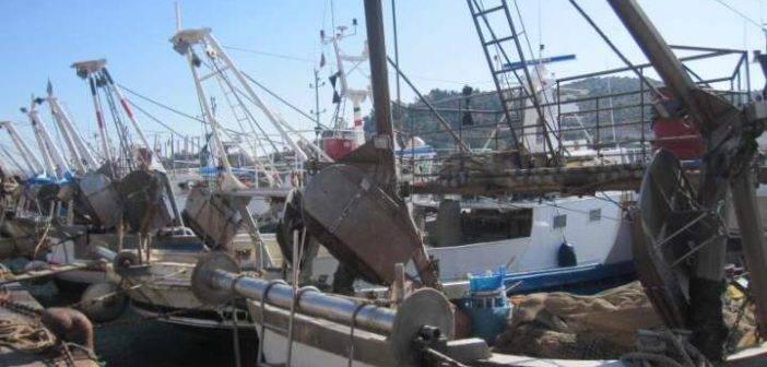 Toscana. Pesca, FLAG Costa degli Etruschi: a Settembre la scadenza dei bandi