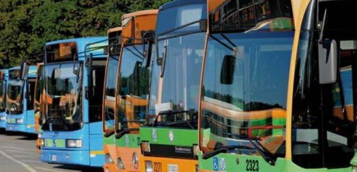 Grosseto e provincia. Dalla Regione 300.000 Euro per il trasporto pubblico locale