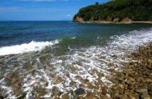 Immagine ripresa da www.enjoymaremma.it/cala-martina-grosseto/