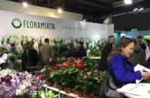 Floramiata_Milano_Myplant_Garden_ 2018_IMG_3205_02