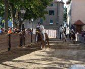 Castel del Piano. Palio: la lista definitiva dei cavalli iscritti alle batterie