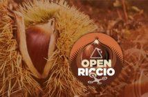 Progetto_Open_Riccio_Banner_01_01