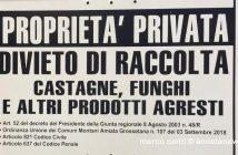 Amiata_GR_Cartello_Divieti_Raccolta_Castagne_Funghi_montagna_01