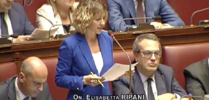 Toscana. Predazioni, sostegno agli allevatori toscani: interrogazione di Elisabetta Ripani (FI) al Ministro Centinaio