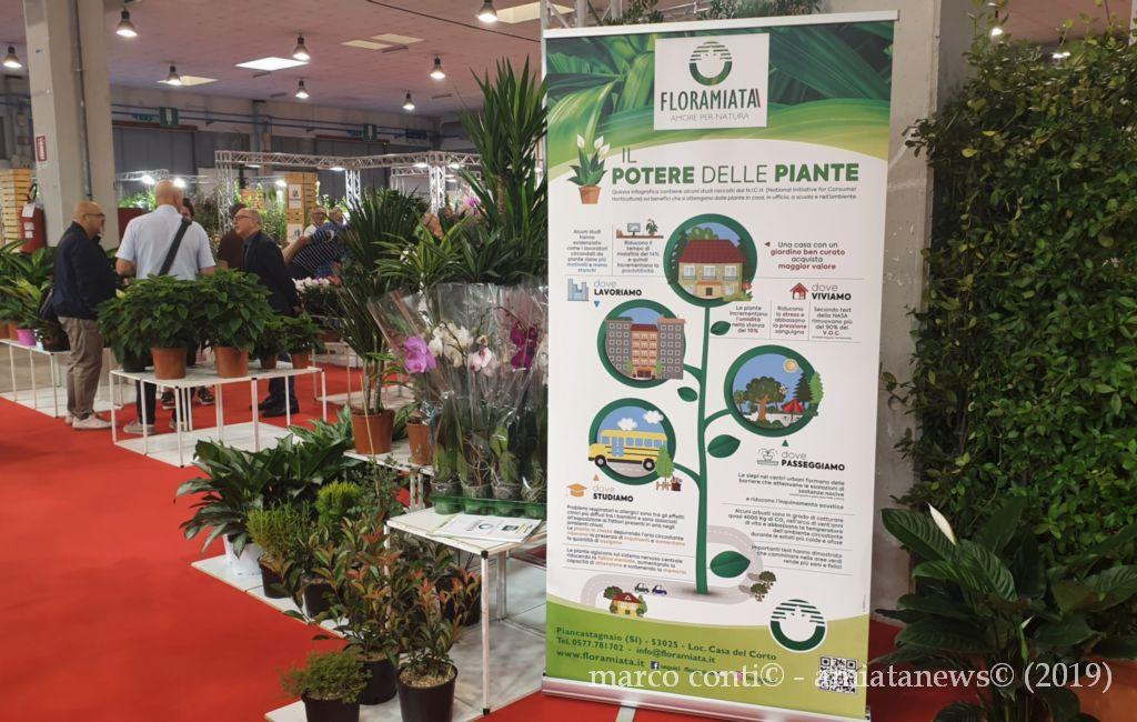 Piancastagnaio_Floramiata_Flormart_2019_20190926_120223